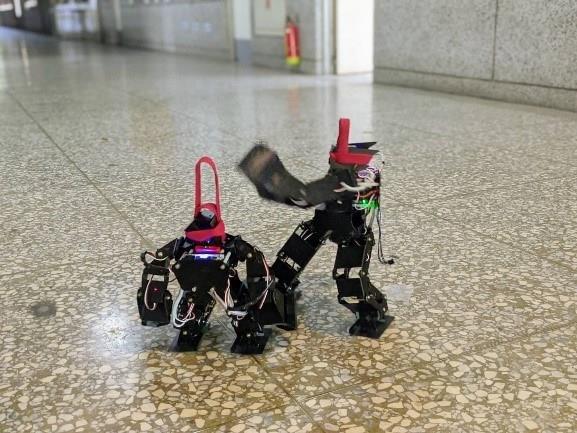 人形機器人操控演練2