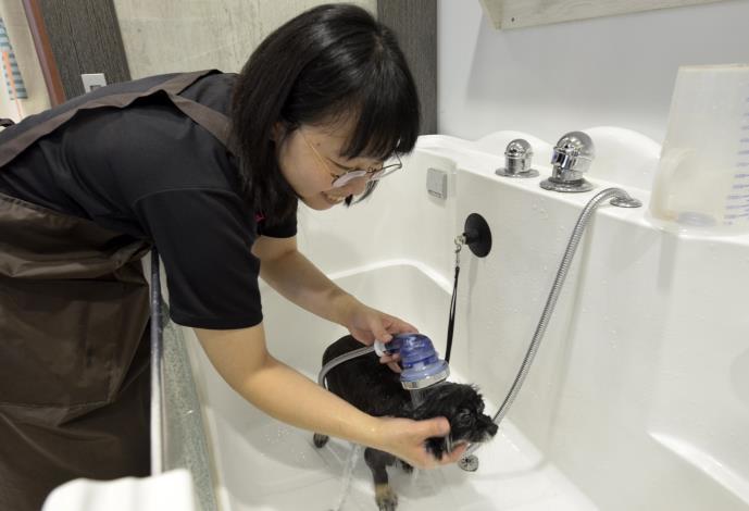 陳芊如說,毛小孩清潔不是洗去髒污就好,還要針對毛質與皮膚狀況選用合適洗劑,才可有效改善皮膚問題。.JPG